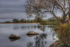 Three rocks (Heathermary44) Tags: outdoor serene calm water lake nature landscape arres denmark rocks reflections trees oldtree