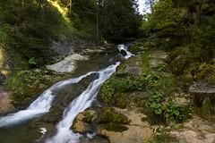 Watercourse (Miksi992) Tags: canon d600 waterfall nature fresh river mountain soil rock bosnia vlasic outdoor landscape water stream creek watercourse ugar ugric