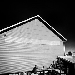 bw barn (christaki) Tags: barn bw monochrome lavender farm rural country va whiteoaklavenderfarm wolf