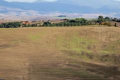 IMG_1376 (Mok Wu) Tags: tuscany italy pienza