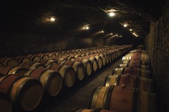 wine cellar (charlesgyoung) Tags: cotedebeaune france burgundy wine winecellar charlesyoung nikonfx nikon d810 vikingrivercruise travelphotography barrels