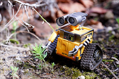 WALL-E (gwennan) Tags: toy pvc jfigure japan figures figure cute anime closeup colors color macro halloween revoltechpixarfigure revoltech walle revoltechpixar kaiyodo walks nature autumn vacation