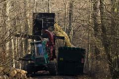 ckuchem-7211 (christine_kuchem) Tags: wald abholzung baum baumstmme bume einschlag fichten holzeinschlag holzwirtschaft waldwirtschaft