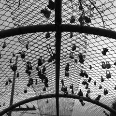 Jory got a perfect shot of these but I wanted one too (Brendan Adkins) Tags: pittmanadditionhydropark fujifilmx100t monochrome locks padlocks chainlink footbridge deadheartsareeverywhere