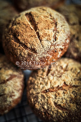 Cheese Roll (TailorTang) Tags: bread baking breakfast homemade food foodphotography stilllife 50mm 5014 fresh seeds flaxseed chiaseed cheese