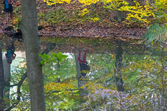 Upside down man (elle.jimmy) Tags: water reflection upside down man fall color