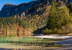 Cromie Autunnali (lorenzapanizza) Tags: lagoditovel parcoadamellobrenta autumn autumnphotography landscapephotography landscape colors reflection foliage beautiful relax outdoor tree clear river italy travel view yellow panoramic sunny lake shape mirror forest fall blue symmetrical mountain crystal beauty scenic sky tourism background water nature vacation tovel