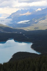 IMG_0492 (ctmarie3) Tags: banffnationalpark peytolake
