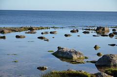 2016-09_Gotland_219