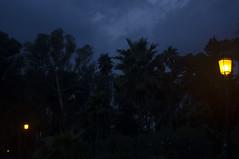 Night walk (Brnmeister) Tags: night walk sky black dark blue light lampposts noche paseo nocturno oscuro luces farolas arboles