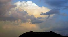 Fluffy (Khaled M. K. HEGAZY) Tags: nikon coolpix p520 kingdomofsaudiarabia ksa nature outdoor closeup yellow blue white black sky cloud mountain المملكةالعربيةالسعودية