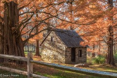 Springhouse at the gristmill (blususan_406) Tags: gristmill newlingristmill fall autumn fence rustic springhouse glenmills pa dawnredwood trees stone old dappled
