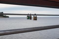 Rodrigo-191116-00037 (Rodrigo Soto Salazar) Tags: amor candados lago llanquihue chile d610