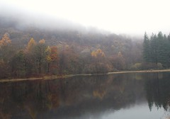 Coniston Water on a damp day! (SAMARA: Back home!) Tags: coniston conistonwater lakedistrict cumbria npvember lake