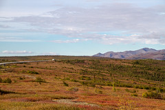 Travel the Arctic Road (2015) (VRileyV) Tags: arctic circle northwestterritories nwt nt dempster highway 2015 camping camper road north tundra landscape canada