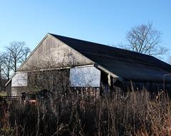 p_0279 (lo.tra) Tags: barn abandoned lotra wildplants roof sky blue classicchrome