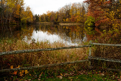 feels like fall to me (Port View) Tags: fujixe2 greenwich novascotia canada 2016 cans2s pond reflection leaves colour color trees foliage fence hennigars