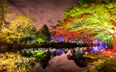 Tranquility (DobingDesign) Tags: london landscape nightcolours reflections trees colours colourful nature longexposure greens autumncolours parkland green natural branches leaves water lake stillness peace tranquility nightshot nighttime dark darkandlight darkness