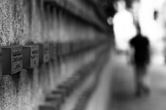 Walk toward the light (parenthesedemparenthese@yahoo.com) Tags: dem allemagne alone auschwitz bn bw blackwandwhite blancetnoir dof ete frankfurt germany jewish memorial monochrome nb noiretblanc silhouette canoneos600d cimetiere day deepoffield ef50mmf18ii exterieur flou fuzzy graveyard journee mur outdoors pdc profondeurdechamp seul streetphotographie streetphotography summer wall