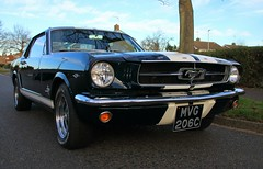 Mustang (Right side) (Tony Howsham) Tags: 1964 classic ford mustang v8 american muscle car canon eos70d sigma 18250