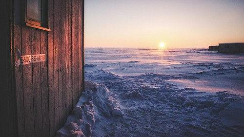 Cabin in the Cold