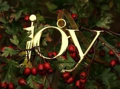 Joy (Karen_Chappell) Tags: joy xmas noel ornament christmas green red berries leaves tree nature macro canonef100mmf28usmmacro decor decoration gold shiny holiday