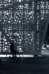 Waiting (relishedmonkey) Tags: nikon d5300 portrait cycle man lights spots design night outside city urban abu dhabi 35mm 18g uae dots explore silhouette black white grey monochrome