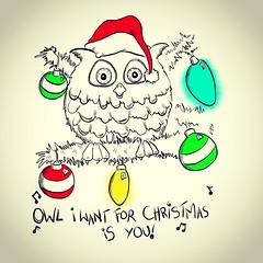 Drawing Behind Door Number 4 (Lynn Adams Illustration) Tags: drawing advent christmas owl digital art ipad ipadpro bauble santa calendar lights pun punny illustration sketch