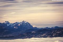 NEBELMEER AM BODENSEE MIT BLICK AUF DEN SÄNTIS #2 (PADDYSCHMITT.DE) Tags: nebelmeer säntis bodensee nebelambodensee bregenz bregenzimnebel winterambodensee schneebedeckteberge