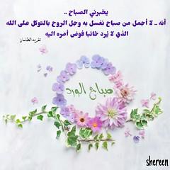 #_ # # #_ # #_ # # #_ # # # #_ #_ # # #__ # # #_ #_ # # _ # #_ # (shereen8080) Tags: