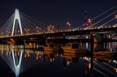 Upside Down (703) Tags: daishibashi japan pentaxk5 reflection tamariver tokyo bridge cityscape night nightscape nightscene nightview river リフレクション 反射 多摩川 夜景 大師橋 日本 東京