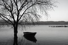 Lake Dojran (cuckove) Tags: cuckove canon eos40d 24mm dojran lake macedonia boat landscape bw monochrome calm emilchuchkov emilchuchkovphotography
