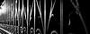high and low (spencerrushton) Tags: spencerrushton spencer sun rushton canon canonlens canonl 24105mm canon24105mmlf4 5dmkiii canon5dmkiii manfrotto manfrottotripod macro beautiful blackandwhite black white monochrome garden gardens gate raw london londonuk uk outdoors daylight dslr dethoffield dof abstract