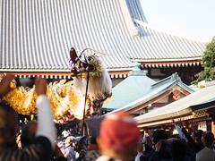 Golden dragon dance (seasonal wanderer) Tags: japan sensoji tokyo dragon asakusa kanto goldendragon asakusakannontemple kinryunomai goldendragondance olympusomdem5 panasoniclumixleicadgnocticron425mmf12