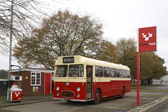 Another trip to Oulton Park (Renown) Tags: bus heritage coach cheshire restored preserved preservation potteries weymann reliance aec oultonpark 470 pmt dualpurpose potteriesmotortraction ah470 805evt sn805