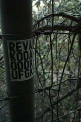 6:20pm (yurFrìeñd) Tags: street art graffiti losangeles graff lazoo slaps oldzoo slaptag lostartist yurfriend