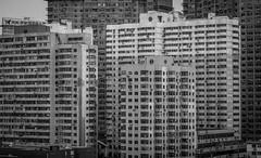 High-Rise Apartments (blake.thornberry) Tags: china bw white black building canon buildings high apartments apartment dalian 100mm highrise f2 prc 中国 rise 黑白 大连 佳能 高楼 公寓 黑白色 辽宁 辽宁省 大连市 高层楼 高层住宅