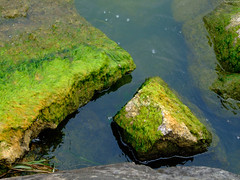 "Slabs of Green Moss on Rocks • <a style=""font-size:0.8em;"" href=""http://www.flickr.com/photos/34843984@N07/15353354069/"" target=""_blank"">View on Flickr</a>"