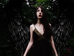 (vinca pervinca.) Tags: halloween girl angel dark photography scary wings fallen