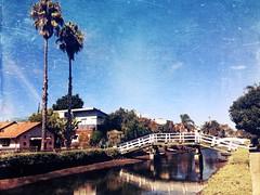 Venice Canals LA CA ( Explored 22/10/14 #217) (Jean5178) Tags: