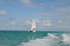 Ile Maurice - Ile Aux Cerfs - 134 (Tsinoul) Tags: sky boat nikon maurice ile ciel catamaran mauritius nuage bateau cerfs océan ileauxcerfs ilemaurice oceanindien océanindien d300s nikond300s