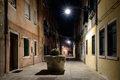Venezia Notturna 2014 (iPol85) Tags: venice night hi 1855 fujinon proneg fujifilmxt1