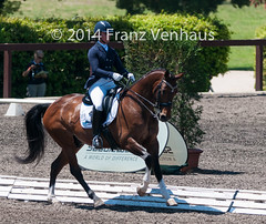 141026_2014_AUS_D_Champs_Medium_5940.jpg (FranzVenhaus) Tags: horses performance sydney australia competition event nsw athletes aus equestrian riders dressage siec