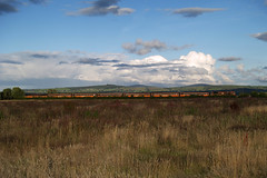 071 class & MK2s south of Straffan 29-July-07 (metrovick) Tags: mk2 irishrail emd iarnrodeireann jt22cw brelmk2