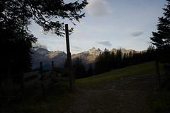 good morning Glarnerland (Toni_V) Tags: autumn alps sunrise schweiz switzerland europe suisse hiking 28mm herbst rangefinder alpen svizzera elm glarus wanderung m9 2014 svizra glarnerland elmaritm foopass 141012 ©toniv leicam9 l1018967 elmfoopassheidelpassweisstannenschwendi