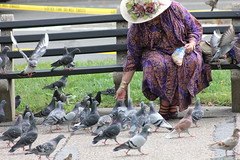 WomanFeedingPigeons.DupontCircle.WDC.14October2014 (Elvert Barnes) Tags: washingtondc dc wdc dupontcircle 2014 dupontcirclewashingtondc northwestwashingtondc dupontcircleneighborhood dupontcircleneighborhoodwashingtondc october2014 dupontcircleneighborhood2014 dupontcircleneighborhoodwdc2014 dupontcircle2014 dupontcirclewdc2014 womanfeedingpigeonssquirrelsdupontcircle tuesday14october2014womanfeedingpigeonssquirrelsdupontcircle 14october2014