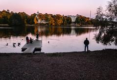 Admiration (themozzarella) Tags: autumn sea people reflection fall nature architecture finland duck helsinki nikon shore dslr admiration admire mallad nikond60