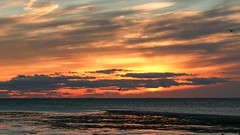 20141108-Sunset over Cape Cod Bay (ChathamGardens) Tags: sunset capecod eastham cooksbrookbeach