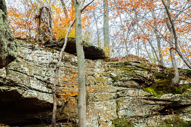 Patoka Lake Hiking Area - November 8, 2014
