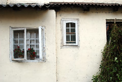 zagreb windows (placeinsun) Tags: windows plants architecture croatia zagreb